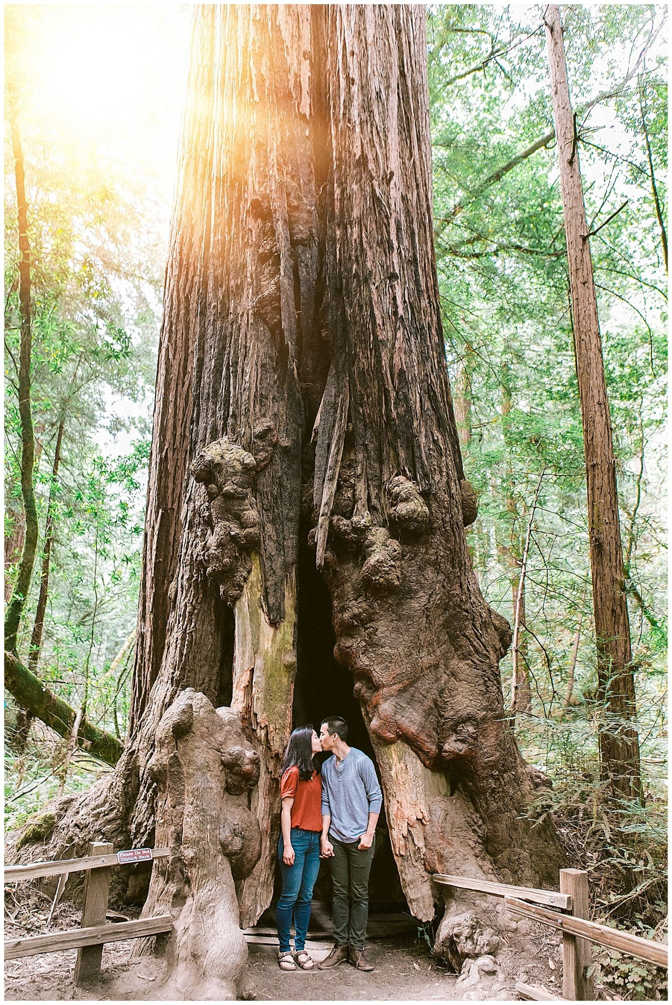 Muir Woods Engagement_1945.jpg